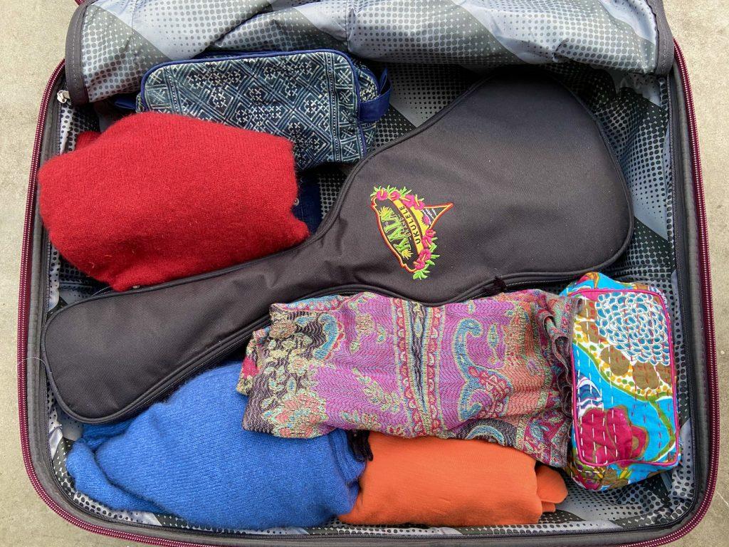 Ukulele in suitcase